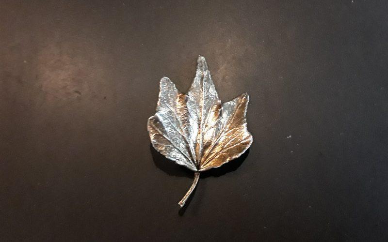 Leaf coated with sliver